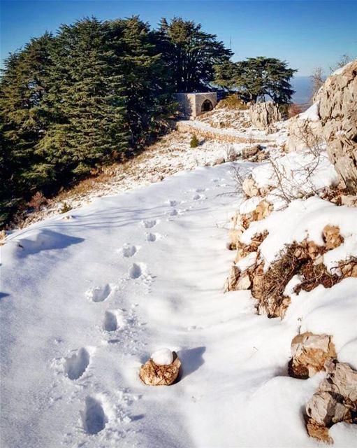 Little steps big achievement steps snowmorning holyplace sanelebanon �