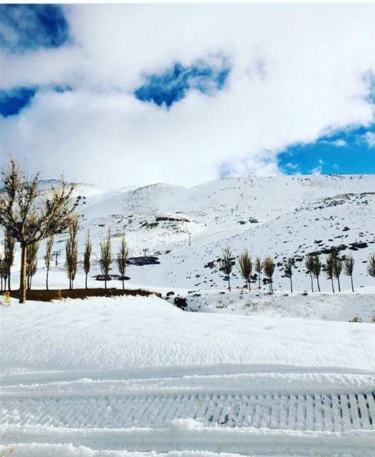 kfardebian lebanon nature explore instagram instagood travel... (Kfardebian,Mount Lebanon,Lebanon)