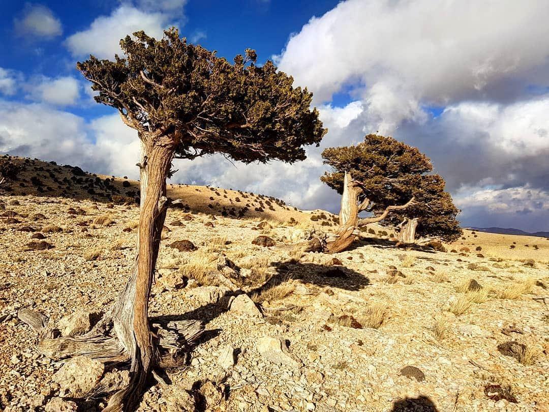 Hermel mountain by @louayac Hermel hermel_city bekaa ... (El Hermel, Béqaa, Lebanon)