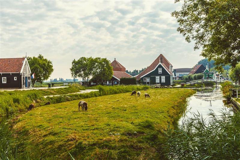 Location: Zaanse Schans, Netherlands Date: 08-2017Instagram : @jadmakare (Zaanse Schans)