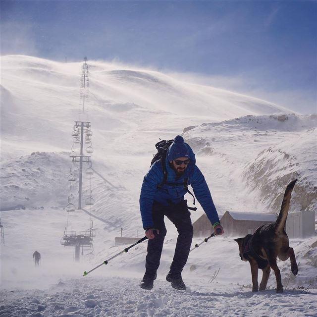 Too much love in one place 😎 🐶 ❄️ hiking hikingadventures snow mzaar... (Mzaar Kfardebian)