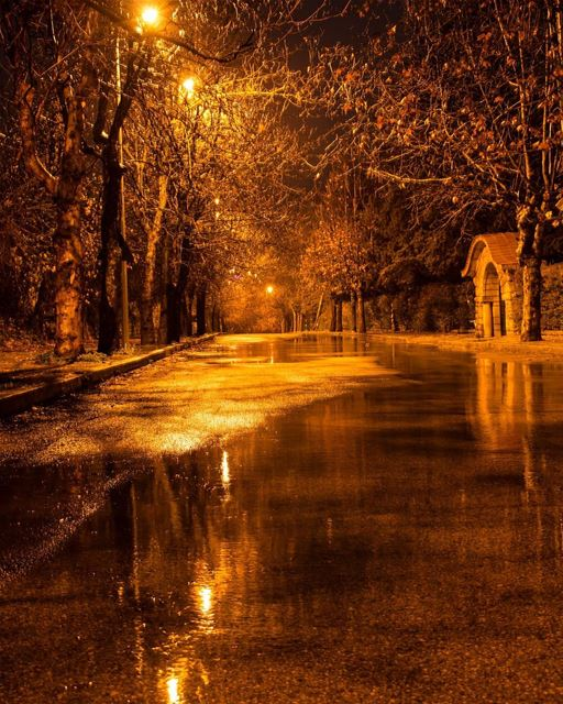 Have a warm night ✨.... photography photographer photooftheday... (Sawfar, Mont-Liban, Lebanon)
