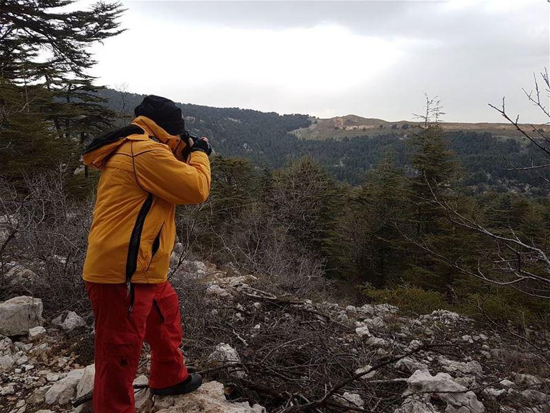Photoadventuring at Cedars... thisislebanon79 beartribeambassador ... (Tannourine Cedars Nature Reserve)