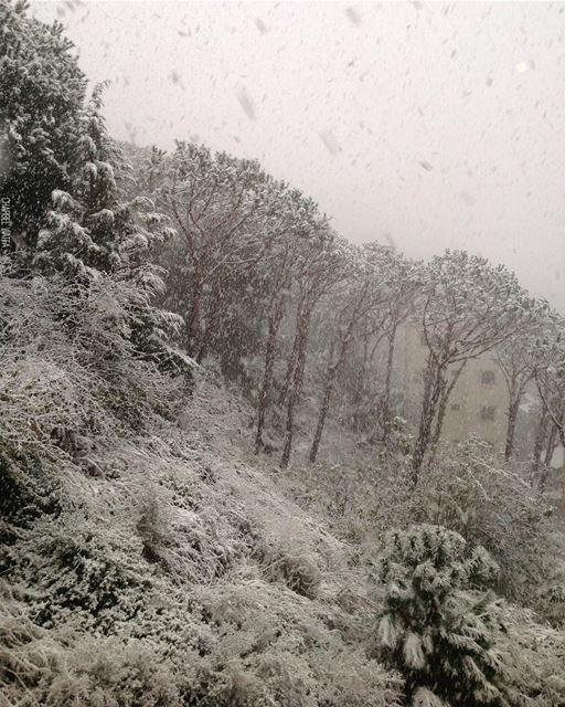Snowflakes are kisses from heaven ❄️ travel Travelgram instatravel ... (Lebanon)