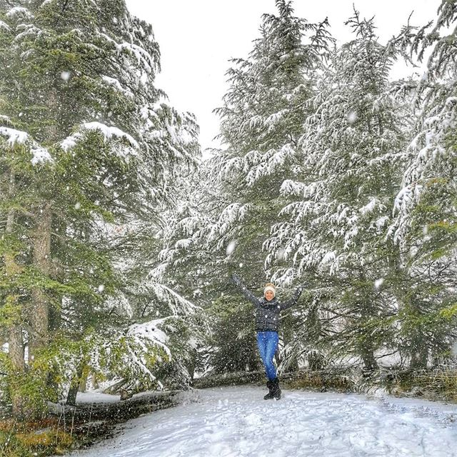 S N ❄️... (Cedars of God)