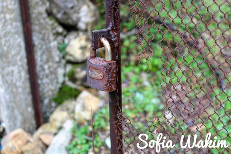 No one makes a lock without a key. livelovebatroun nature ... (Douma, Liban-Nord, Lebanon)