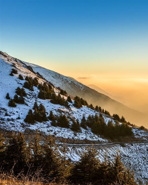 The golden hour | Mount Barouk sunset 7-1-2018. The fog reflected... (Maaser El Shouf Cedar Reserve محمية ارز معاصر الشوف)