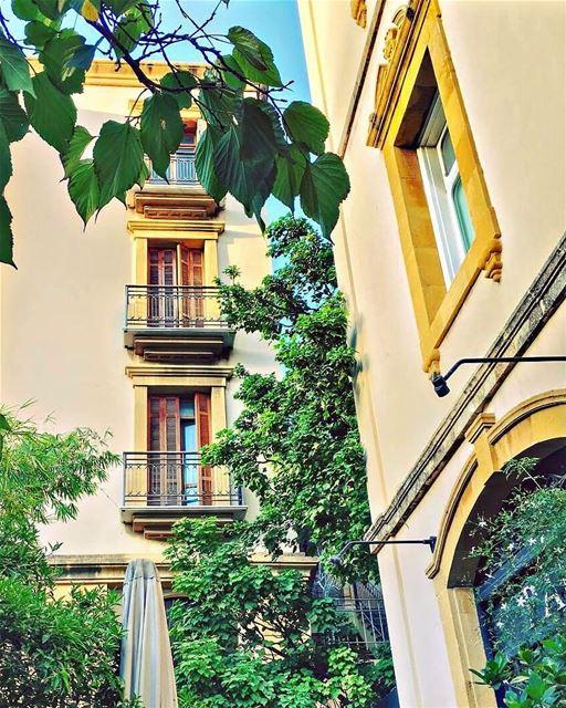 Beirut hiddens beauty 🌳💙💚---------------------------------------------- (Beirut, Lebanon)