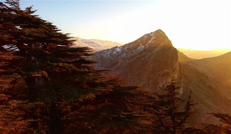 Retracting sun rays leave behind magic.  Lebanon  Cedar  sunset  mountain ... (Cedar Reserve Tannourine)