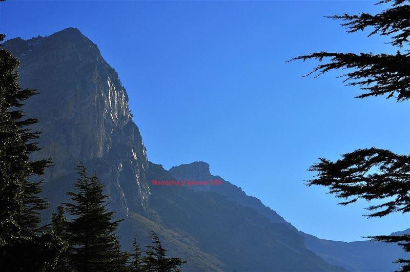 Gold reflexion from melting snows on this majestic ridge, Tannurine!... (Arz Tannoûrîne)