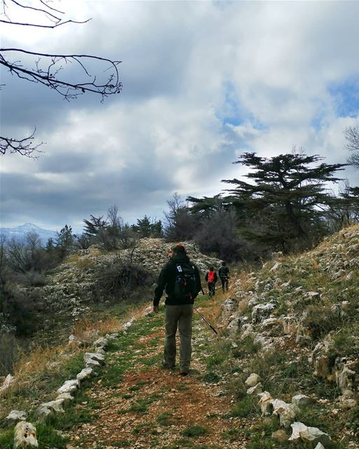You ever hiked the same trail in different seasons? 🌲🚶🌲---------------- (Lebanon)