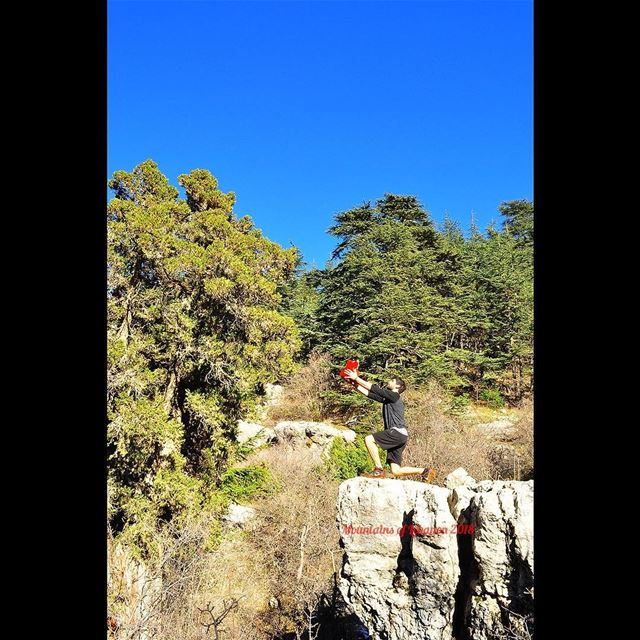 Griff initiation as the king of the Cedars Forest😁 (in reference to Simba... (Arz Tannoûrîne)
