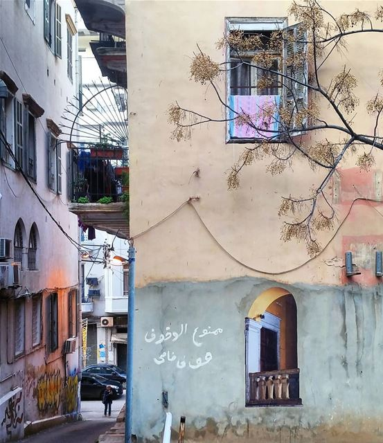 💙 زواريب بيروت (بيروت)