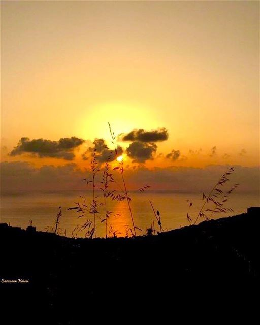 sunset sea colors lebanon reflection ...