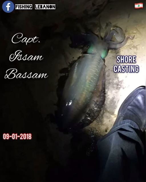 @issambassam @fishinglebanon - @instagramfishing @jiggingworld @whatsupleba (Beirut, Lebanon)