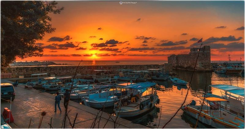A view of the fishing bay.... (Byblos - Jbeil)
