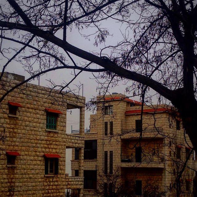 ~ 🌫☁️~ (Bhamdoûn, Mont-Liban, Lebanon)