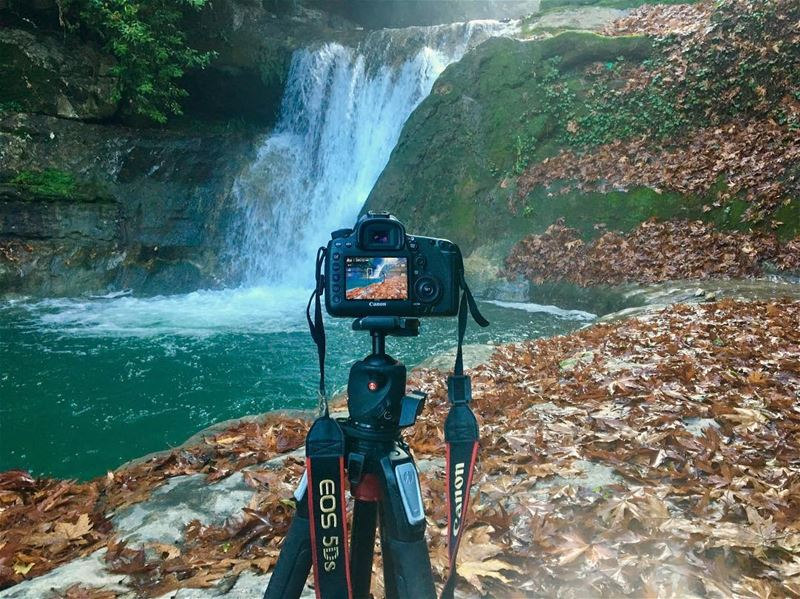 Shooting... canon photography canonme canon5ds nature life ...