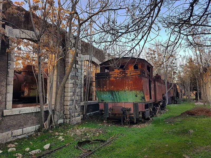 Abandoned. ... (Riyaq, Béqaa, Lebanon)