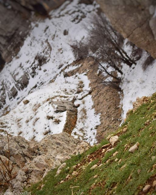 العواصف والثلوج تفني الزهور ولكنها تُحيي بذورها 👌 lebanon photography ... (Kfardebian,Mount Lebanon,Lebanon)