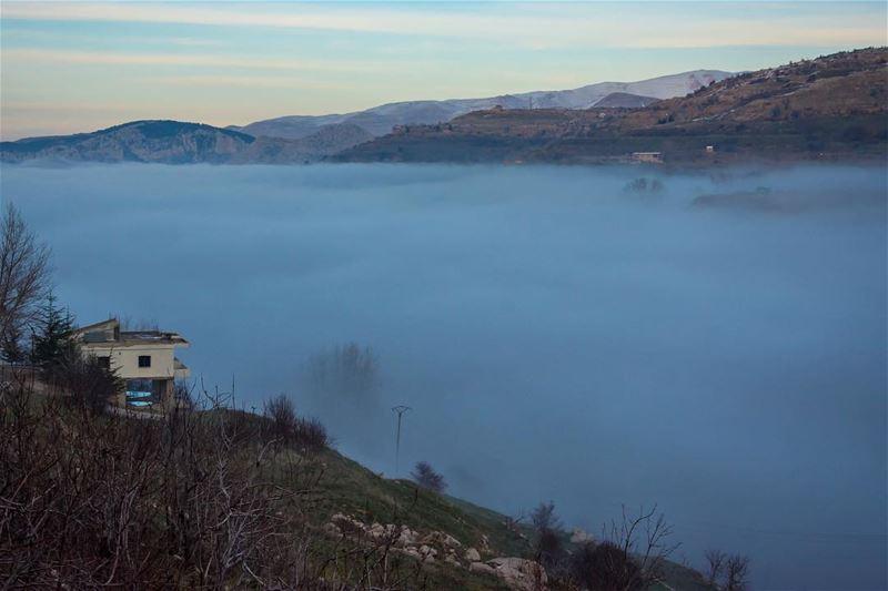 Mist hunger...shot from tannourine lebanon landscapephotography ...