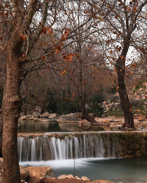 Wadi l akhdar river.14/01/2018... photography photographer... (Kafarroman)