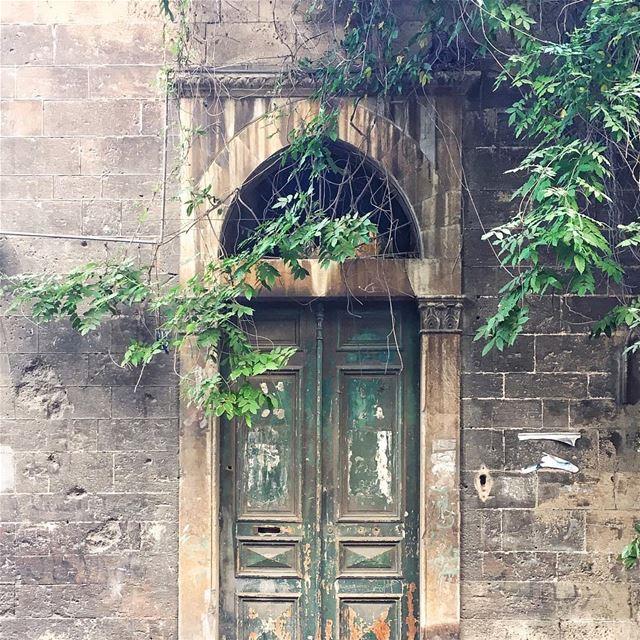 good morning Beirut 🌱☀️🍃 (Beirut, Lebanon)