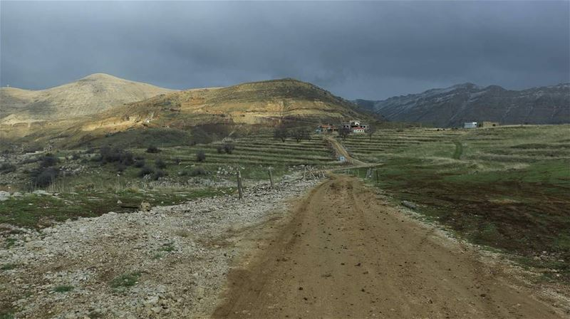 There are many roads to go. Which one would you choose? thisislebanon79 ... (Mountain View Tannourine)