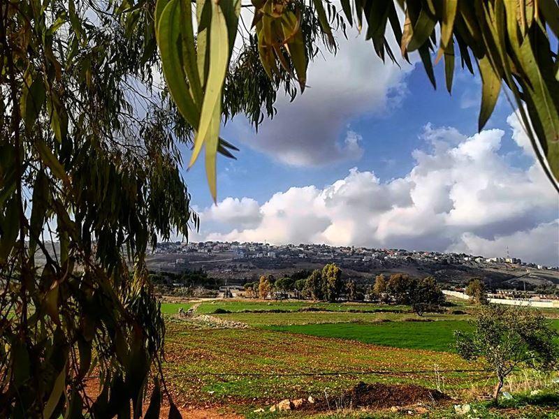 marjayoun alkhyam beatifulweather springview in wintertime ... (Marjayoûn, Al Janub, Lebanon)