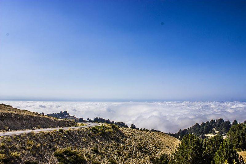 It's not the goodbye that hurts, but the flashbacks that... (El Qâmoûaa, Mont-Liban, Lebanon)