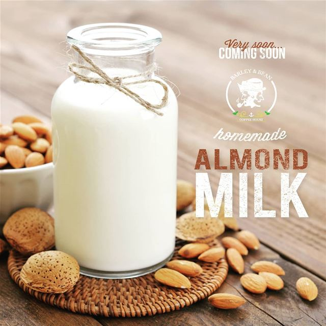HOME - MADE ALMOND MILK AVAILABLE SOON AT BARLEY & BEAN COFFEE HOUSE...