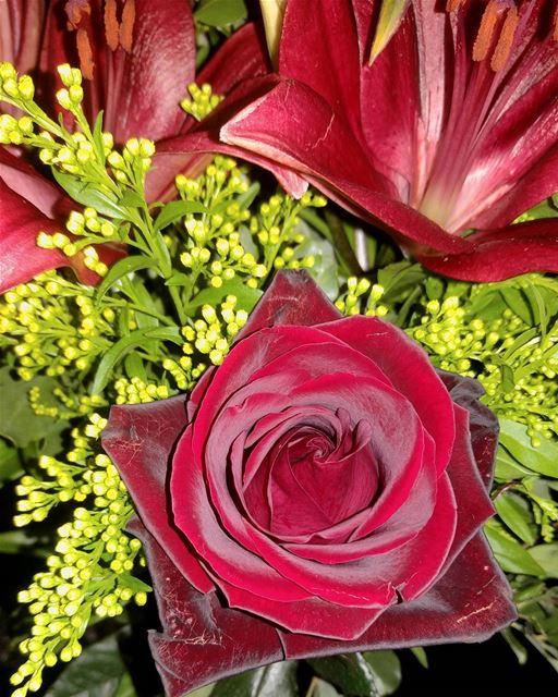 Say it with flowers Goodmorning goodmood happyholiday sunday ...