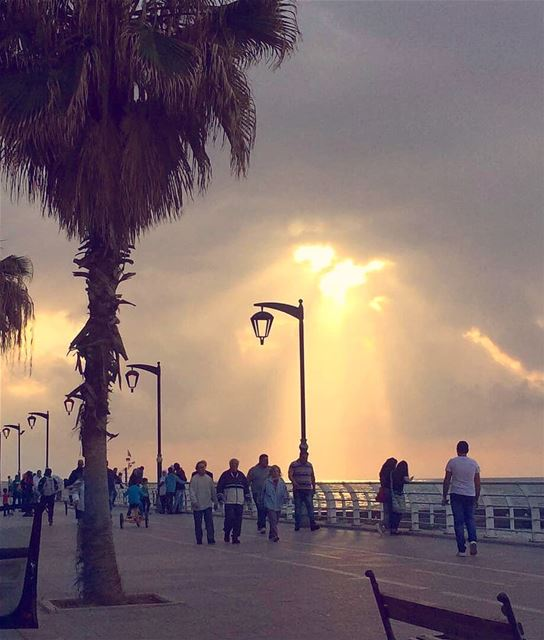 Never waste any amount of time doing anything important when there is a... (Beirut, Lebanon)