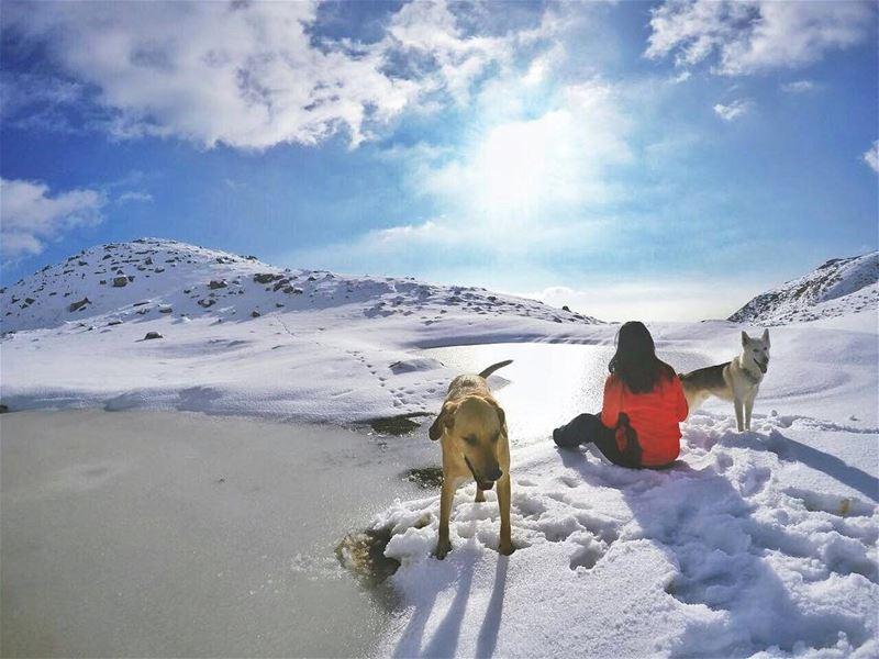 قَدّيْش كان في ناس عالبركة تنْطُر ناس (Faraya, Mont-Liban, Lebanon)