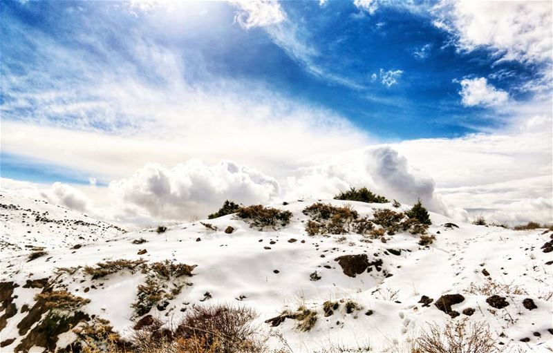 Pure, divine and fragile... lebanon snow theimaged agameoftones ...