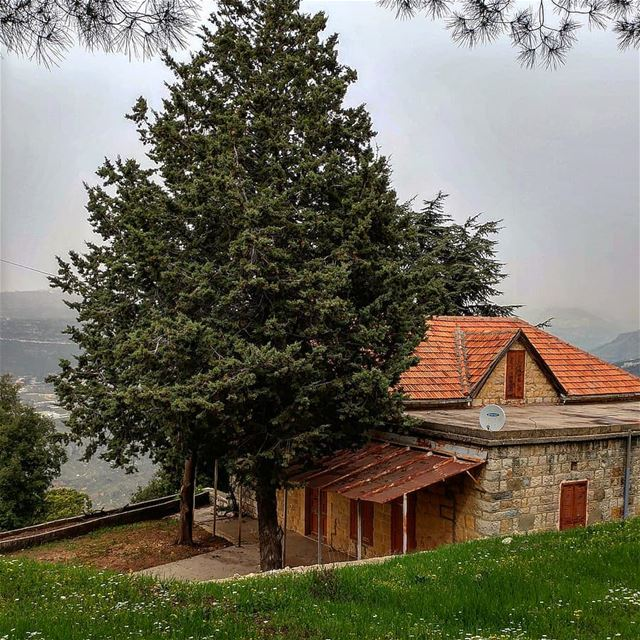 My dream house, with the million dollar view of the valley and cliffs. ... (Kafr Mattá, Mont-Liban, Lebanon)