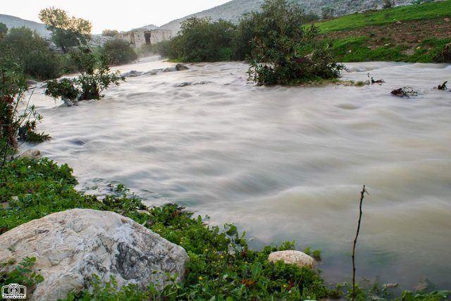 صباح الخير من حومين الفوقا morning nature river lebanon southlebanon...