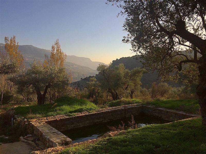 لا تبالغ في المجاملة حتى لا تسقط في بئر النفاق.. لا تبالغ في الصراحة حتى لا (Mazra`At Ash Shuf, Mont-Liban, Lebanon)