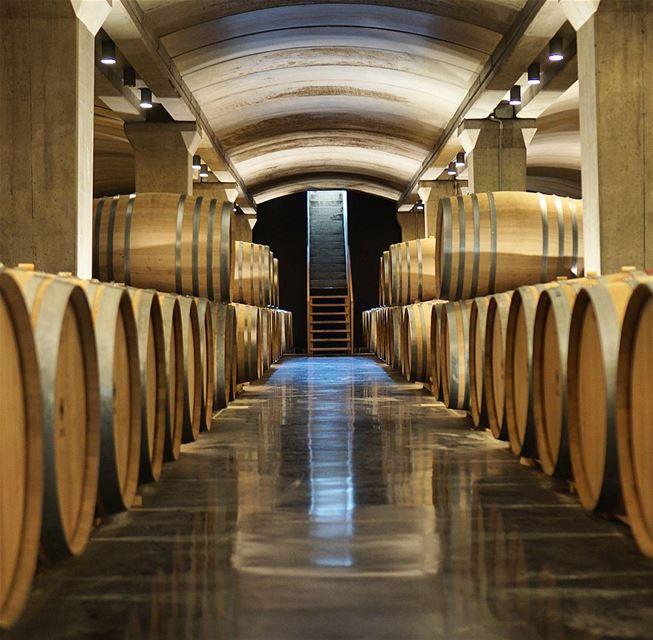 Screw it wine simplywinesau wine🍷 luxurylifestyle wein sommelier ...
