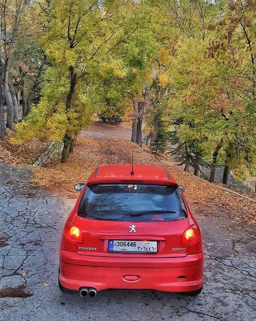 peugeotsportlebanon   peugeot206RC   sportscars   red  roadsafety ...
