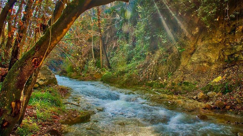 The river runs to youThrough desert, dust and youStill owe me something;... (Baaklin, Mont-Liban, Lebanon)
