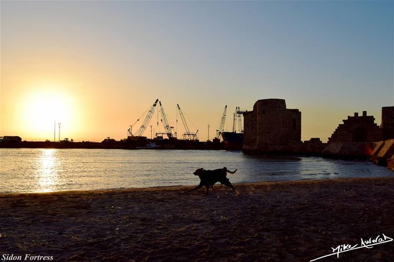 Every sunset have his own story... lebanon saida livelovesaida ...