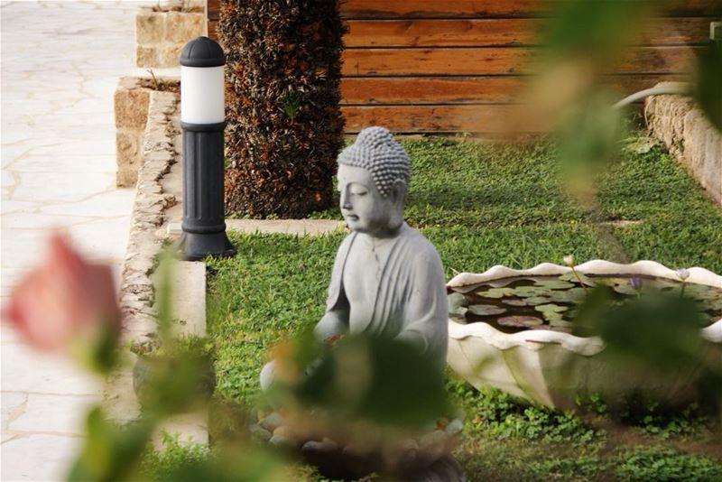 a peek into a meditative garden 🌸 (Byblos - Jbeil)