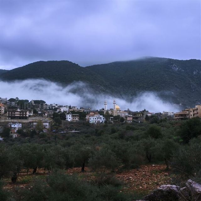 Winter waves 🌁, woke up to see this 😍, winter timelapse video, 600... (`Arab Salim, Al Janub, Lebanon)