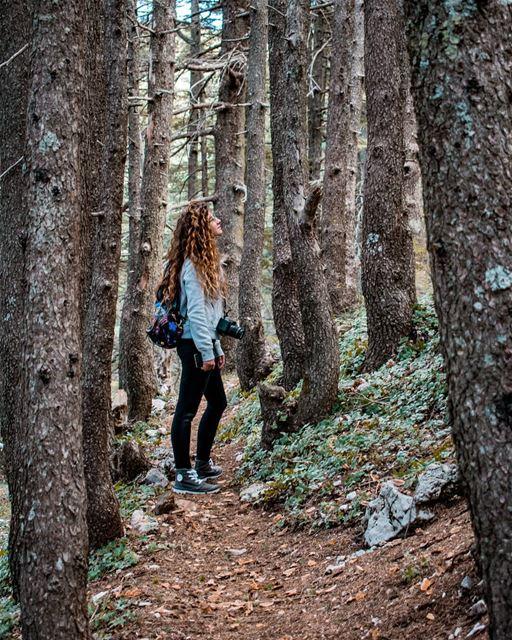 Feeling the woods ;cred📷 @jubranelias... naturephotography ...