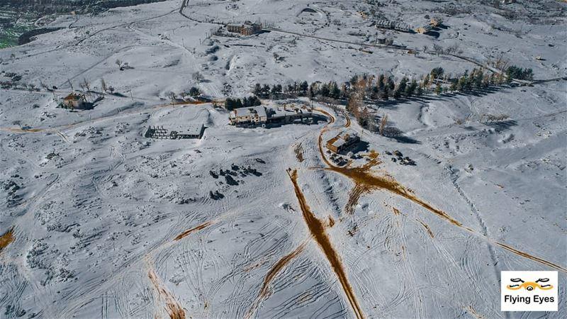 White mountains ploughed by offroaders@jaballebnen4x4 🔴⚪⚪🌲⚪⚪🔴 ... (Salib Bekish)