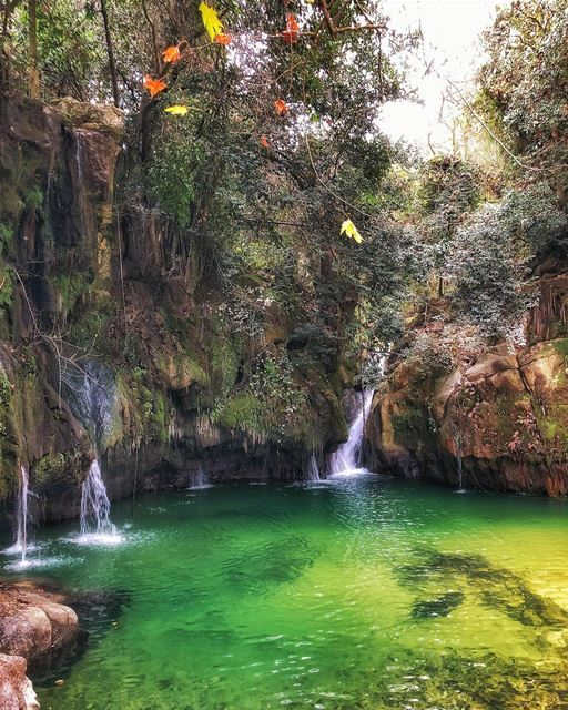Take me back to baakline .... livelovebaakline tbt shouf nature ... (Shallalat Al Zarka شلالات الزرقا)