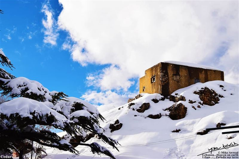 Wish you a warm snowy day snow cedars clouds blue souwarfromlebanon ...