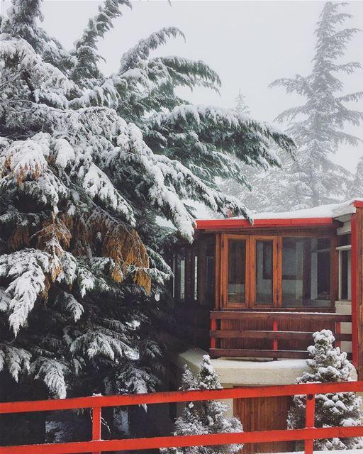 Cold but beautiful ❄️❤️ coldweather snowday winterwonderland mzaar ... (Mzaar Kfardebian)