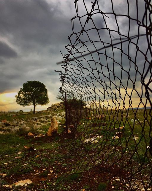 No borders, just horizons....... southlebanon borders antiisrael ... (Maroon Al Rass South Lebanon)